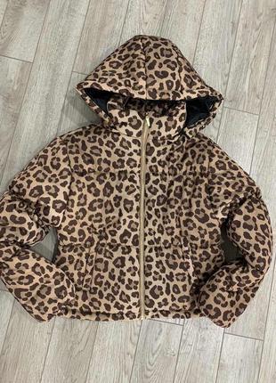 Курточка guess оригинал леопардовый принт