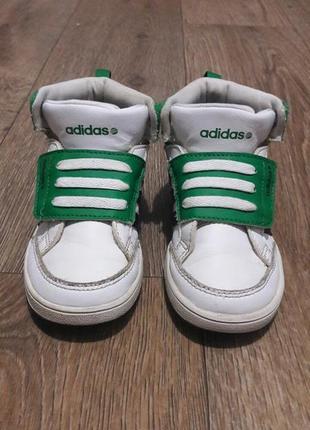 Кроссовки хайтопы adidas leo label