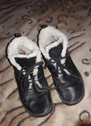 Кожаные на цегейке ботинки зимние