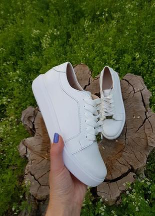 Кеды белые кожаные женские . хит продаж!!