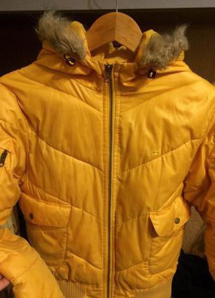 Яркая курточка на синтепоне