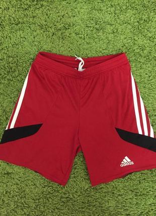Детские спортивные шорты adidas р 140