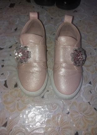Туфлі .кеди