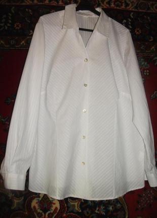 Рубашка,блузка белая