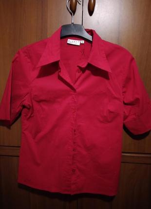Яркая рубашка с коротким рукавом