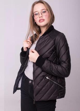Высококачественная демисезонная весенняя куртка от производителя