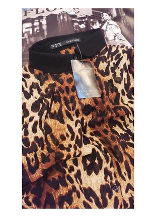 🖤 леопардовая блуза