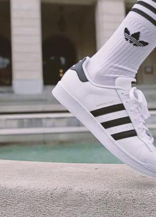 Крутые высокие носки adidas originals1  Крутые высокие носки adidas  originals2 ... 855db1c4cacc0
