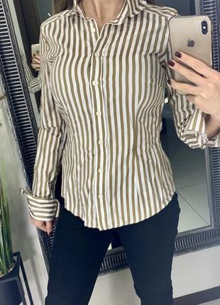 Брендовая коричневая полосатая рубашка ted baker / рубашка в полоску