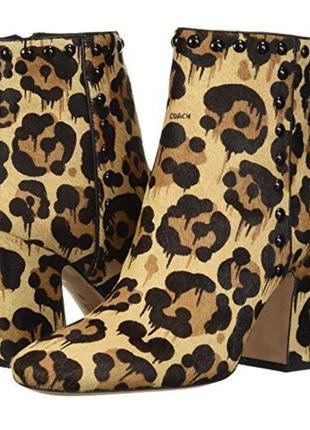 Леопардовые ботинки coach