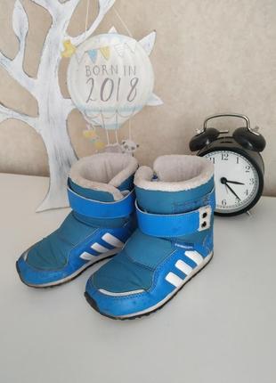 Термо ботинки adidas, сапоги