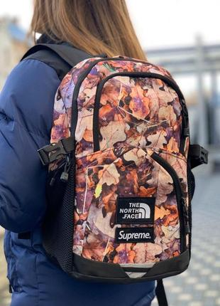 Рюкзак supreme the north face leaves tnf