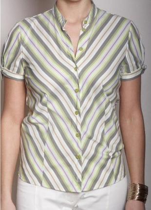 Натуральная хлопковая рубашка украина италия много моделей md vera