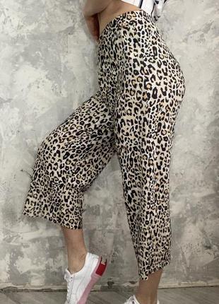 Штаны, колоты , леопард