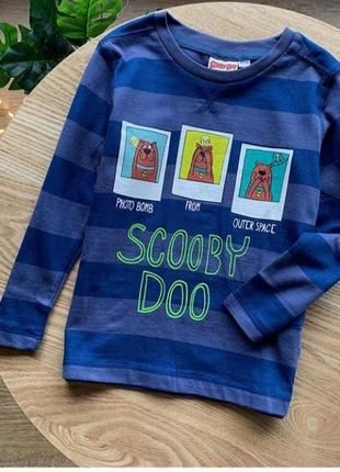 Реглан на мальчика с любимым героем scooby-doo