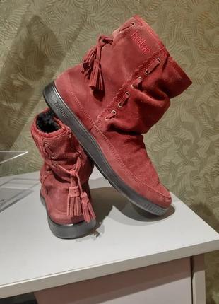 Hotter натуральная замша сапожки женские ботинки женские 38-39 р
