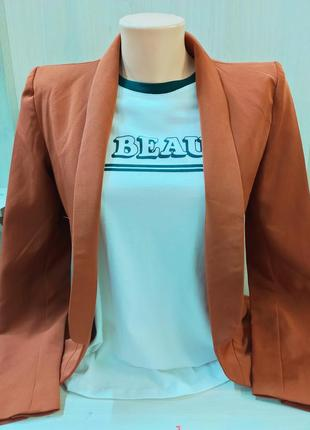 Шикарний таракотовий піджак