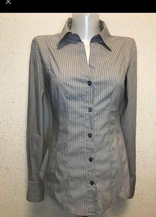 Котоновая серая рубашка в полоску
