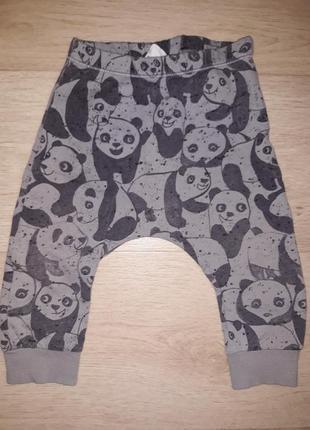 Супер штаны, штанишки хлопковые с пандой