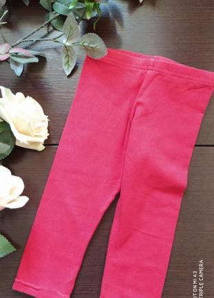 Лосины леггинсы штаны штанишки