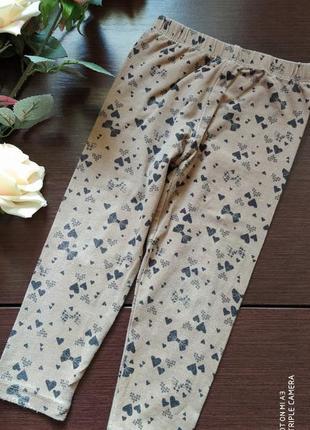 Штаны штанишки лосины леггинсы