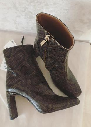 Ботинки zara под питона