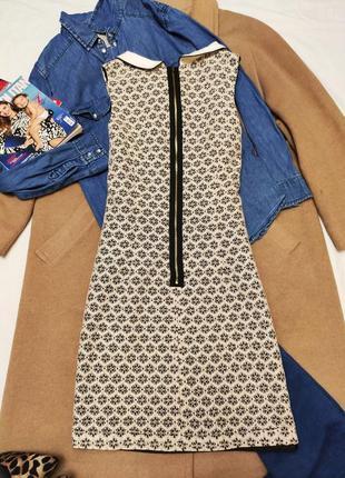 Miss selfridge платье ажурное чёрное бежевое с белым воротником прямое3 фото