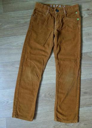 Вельветовые штаны, брюки esprit 8 лет (128см)