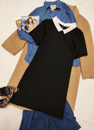 Дороти перкинс платье классическое чёрное прямое с белым воротником трикотажное