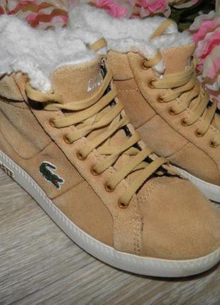 Обнова! ботинки lacoste (р. 28, стелька 19см) сапожки сапоги оригинал