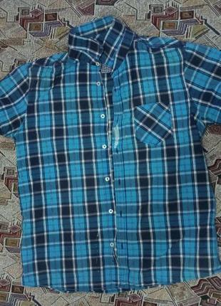 Рубашка клетчатая (фирма colins)