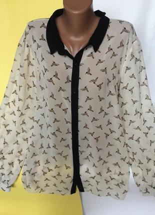 Шикарная рубашка блуза в птичку tu