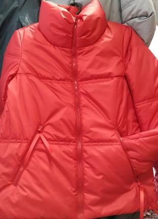 Куртка gf расцветки курточка