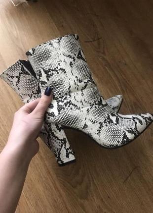 Ботинки полусапожки змеиный принт хищный принт каблуки сапоги ботильоны