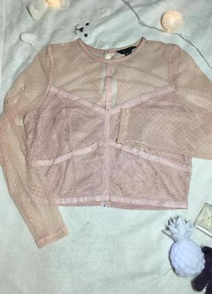 Новая шикарная укороченная блуза-топ