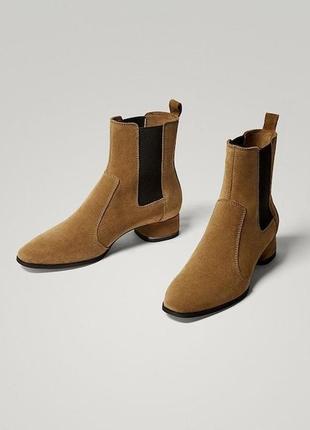 Новые замшевые ботинки ботильоны челси massimo dutti натуральная кожа