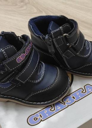 Ботинки димесезонные