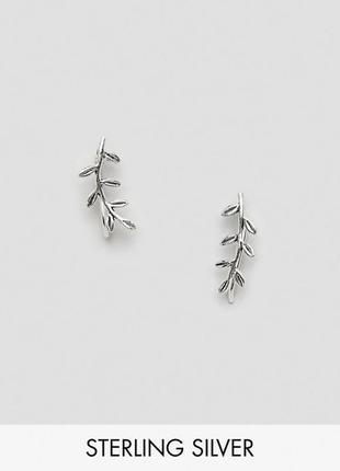 """🌿 миниатюрные серебряные  серьги каффы  """"веточки с листиками"""" от kingsley rayan"""