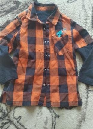 Яркая модная рубашка