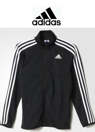 Кофта, мастерка, олимпийка adidas