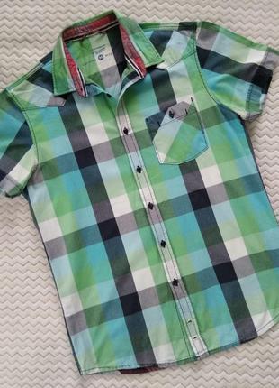 Рубашка сорочка  tom tailor