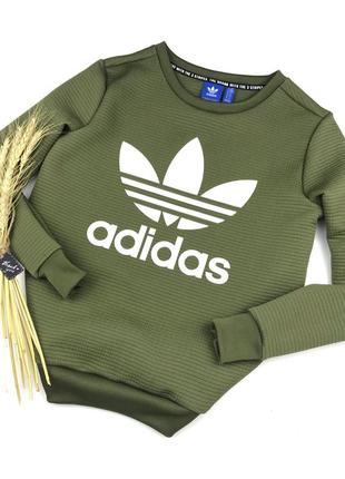 Актуальный трендовый плотный свитшот цвета хаки от adidas