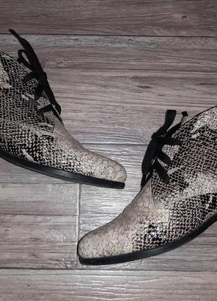 Деми ботинки со змеиным принтом (кожа+лак) р.39