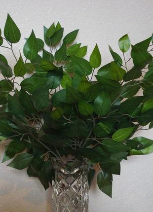 Искусственные листья бенжамин для интерьера