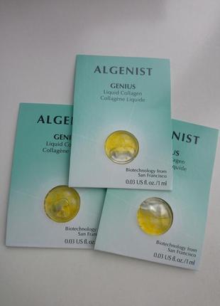 Коллагеновая сыворотка algenist