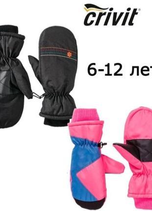 Лыжные перчатки crivit