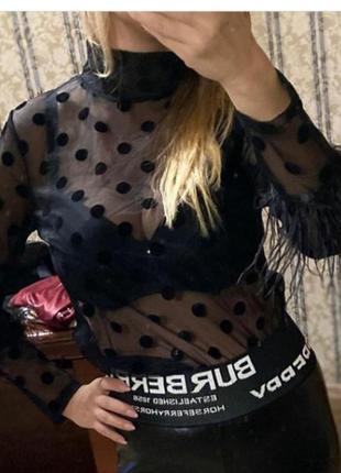 Блуза,в кружочек, размер с/м