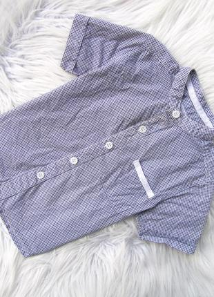 Стильная рубашка с коротким рукавом debenhams