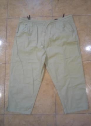 Супер батал! бриджи брюки 100 % хлопок поб до 72 см