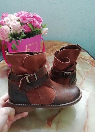 Черевички ботинки кожаные next